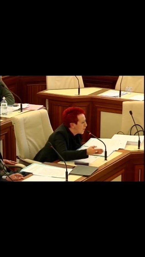 Audizione al Senato